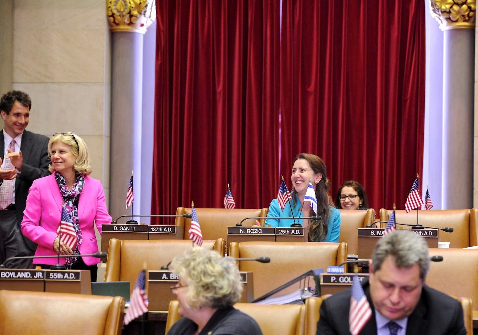 Assemblywoman Nily Rozic introduced 59 bills and resolutions during her first year in the State Assembly.