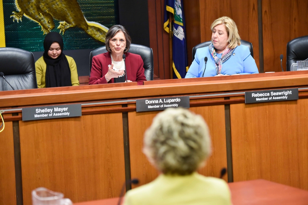 On Tuesday May 23, 2017, the Assembly Committee on Children and Families and the Assembly Task Force on Women's Issues held a joint hearing with the Senate to examine access to quality child care. Seawright, along with her Assembly colleagues called for an investigation into the barriers to accessing quality child day care and examining how such lack of access relates to a variety of issues including child development, family stability, and the economy.<br />