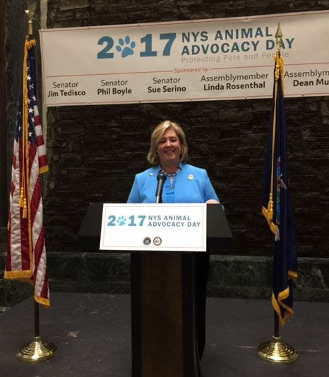 "At the 7th Annual Animal Advocacy Day on June 6, Assembly Member Seawright joined fellow animal lovers to call for passage of ""Kirby & Quigley's Law"" and other bills to protect pets and people.<br />"