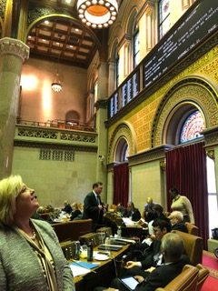 Two Roosevelt Island bills introduced by Assembly Member Rebecca A. Seawright regarding the management and organizational structure of the Roosevelt Island Operating Corporation (RIOC) were passed by the Assembly on Tuesday, March 20, 2018.<br />