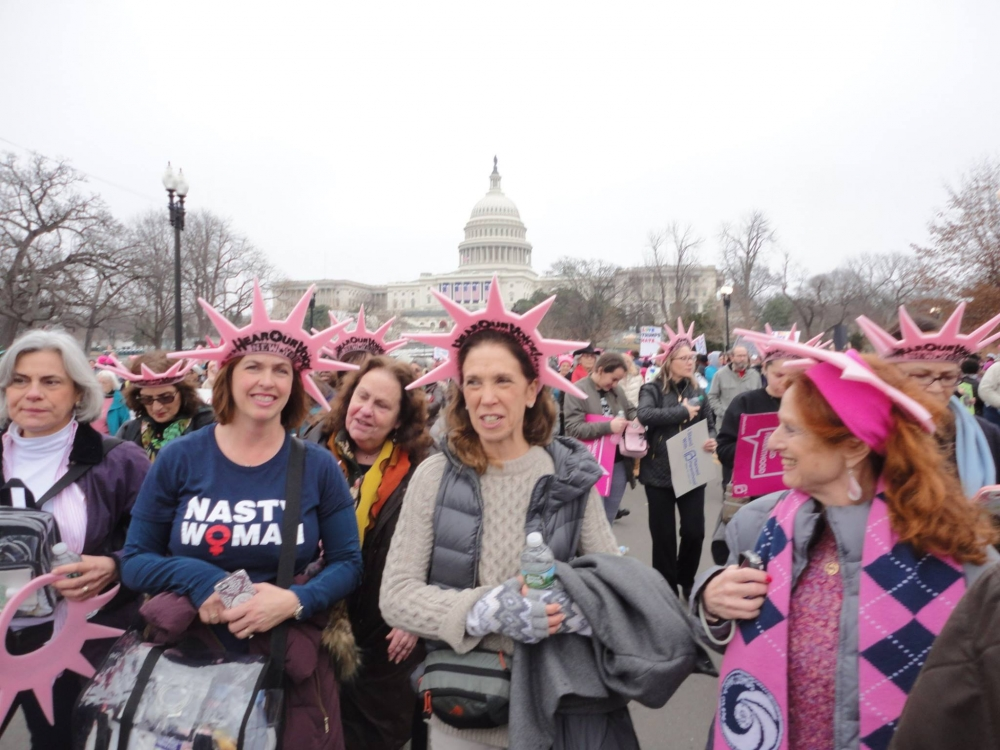 Assemblywoman Amy Paulin led three busloads of constituents during the Women's march on Washington.