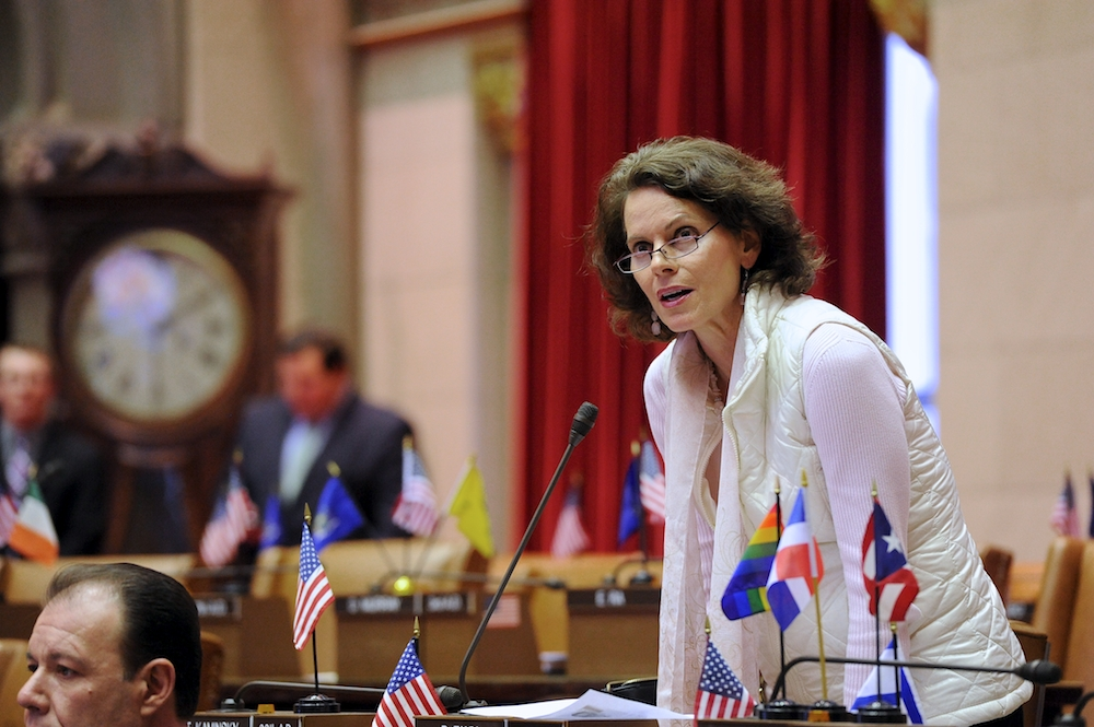Assemblywoman Fahy on the floor of the New York State Assembly.  June 2015.