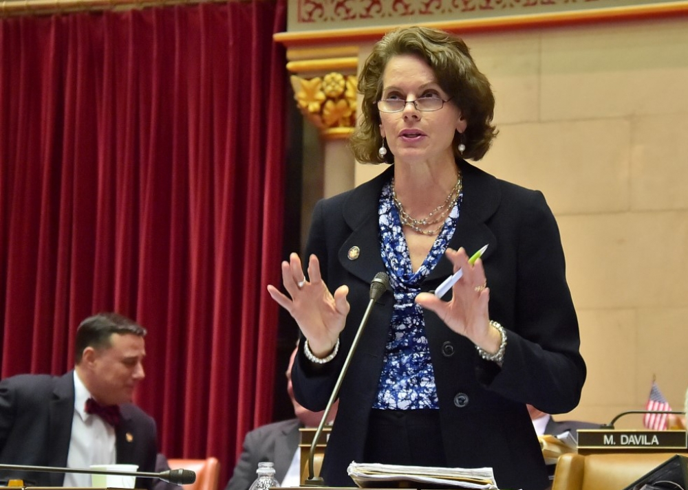 Assemblywoman Fahy during 2015 Assembly budget debates.