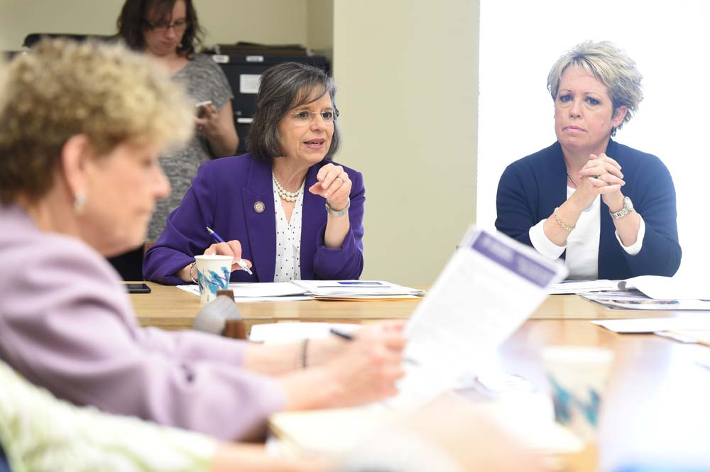 May 10, 2016 � Assemblywoman Lupardo, Chair of the Committee on Children and Families, leads a meeting of the committee.