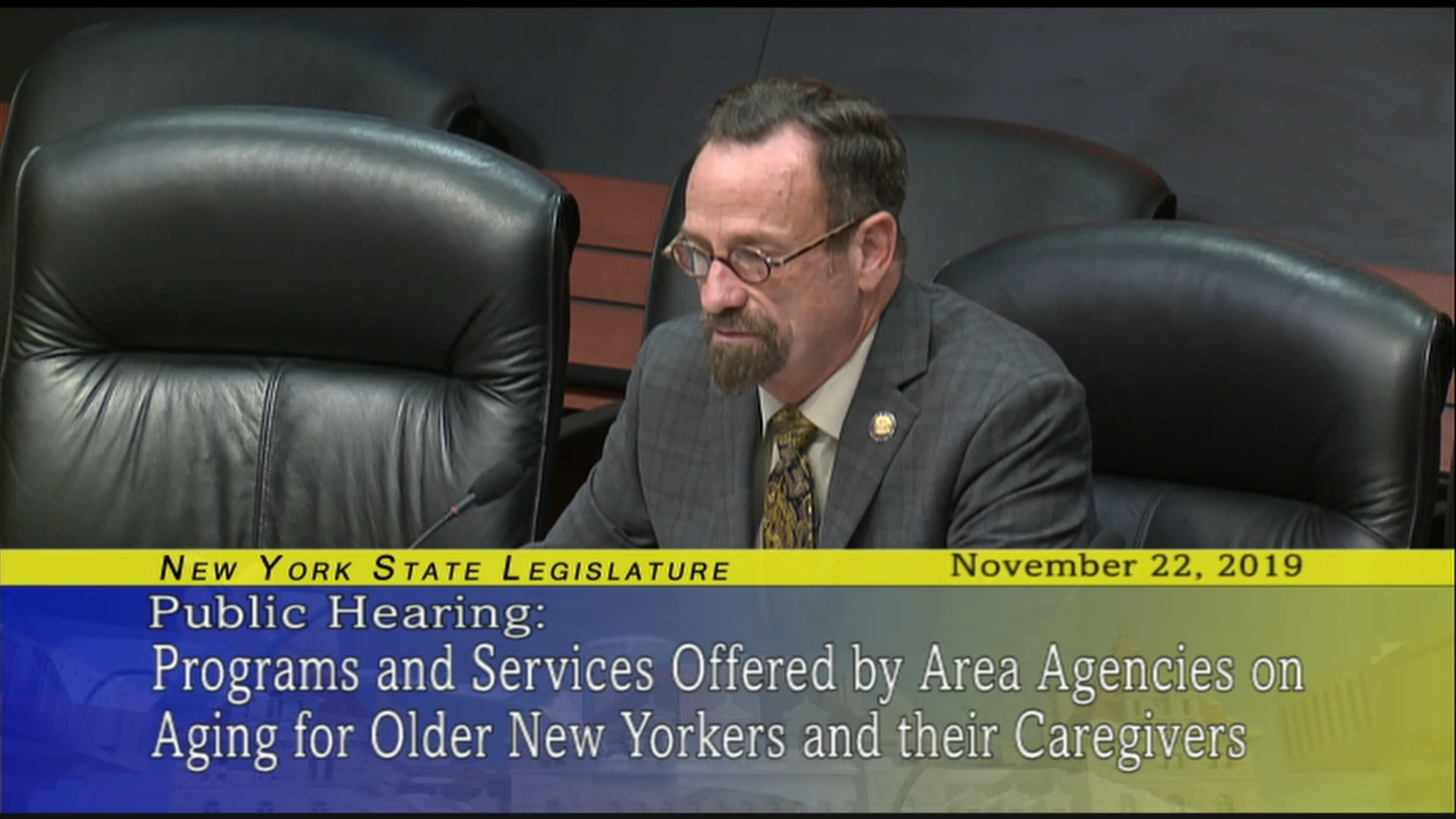 Public Hearing On Programs And Services For Aging New Yorkers (7)